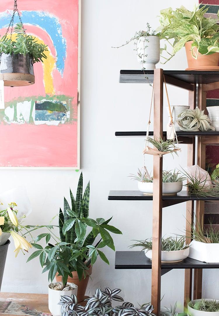 Local Love Plant Store