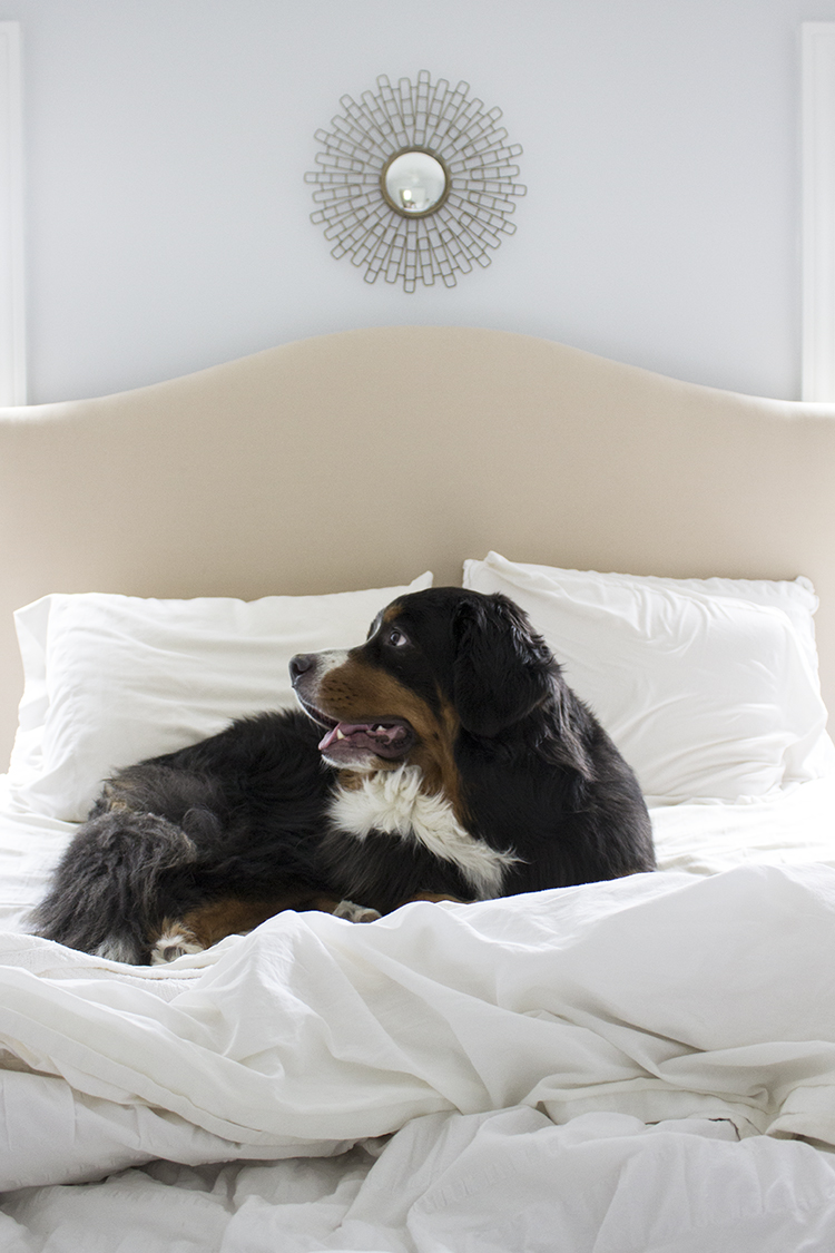 Favorite Quality Bedding - Room for Tuesday