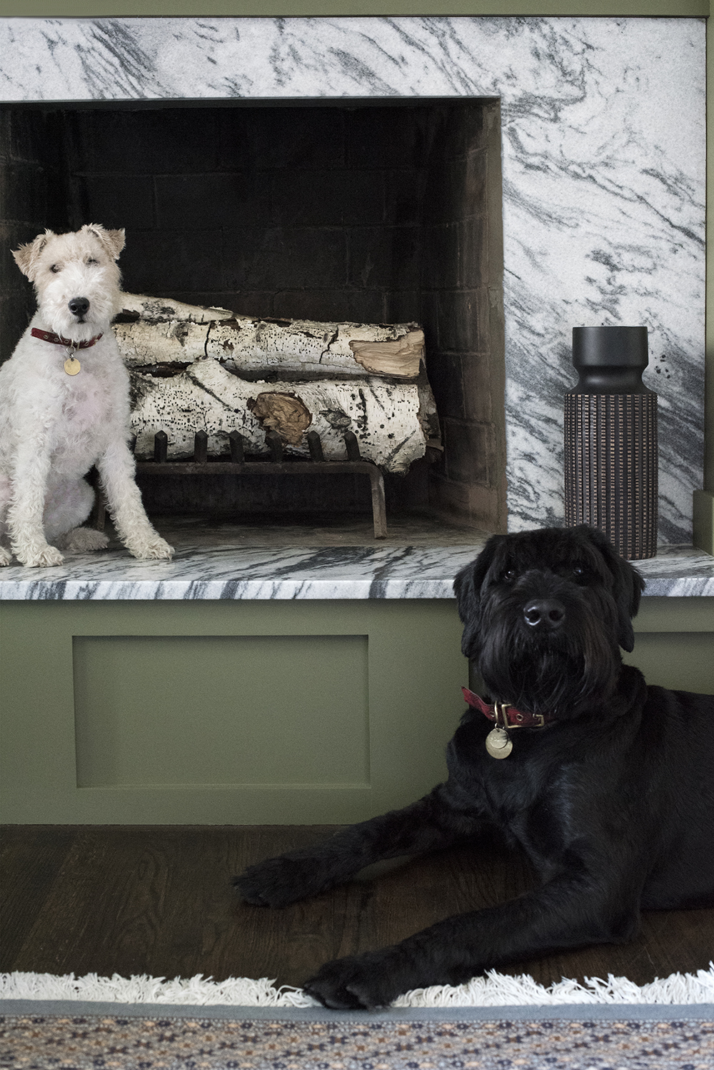 Dogs in front of fireplace