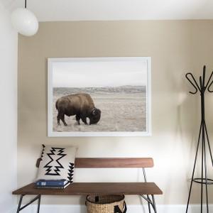 buffalo print in mudroom