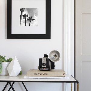 framed palms print